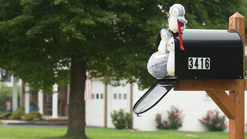 Stuffed penguins are seen sitting in and around a large mailbox.